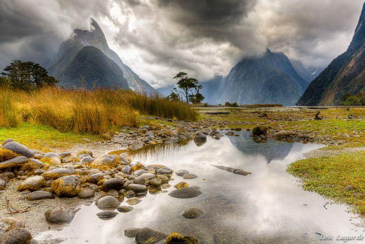 Información básica para viajar y trabajar en Nueva Zelanda.