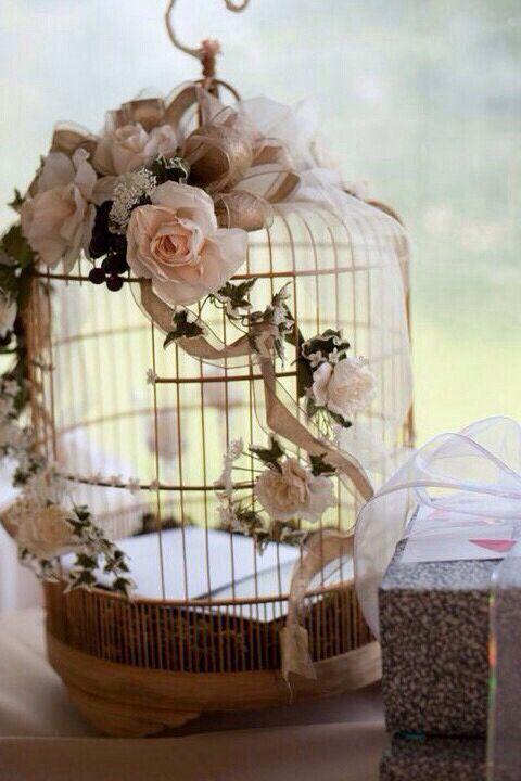 Cool bird cage