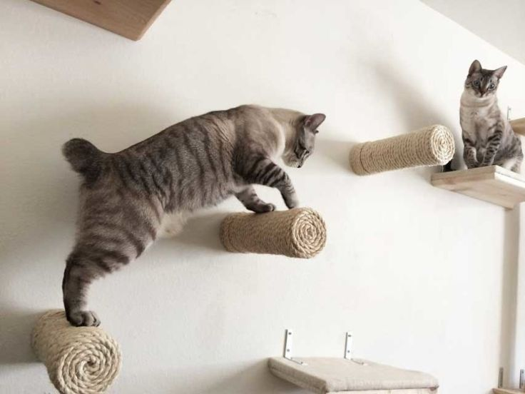 Floating Sisal Post Steps |  $35 | Embrace your cat's climbing and scratching tendencies Natural sisal rope A climbing cat's dream All hardware is hidden, so the post appears to be floating Tested to hold 62 lbs
