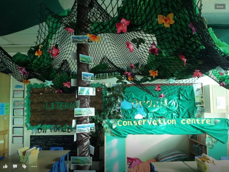 Rainforest Classroom Decoration Ideas ~ Best rainforest classroom ideas on pinterest jungle