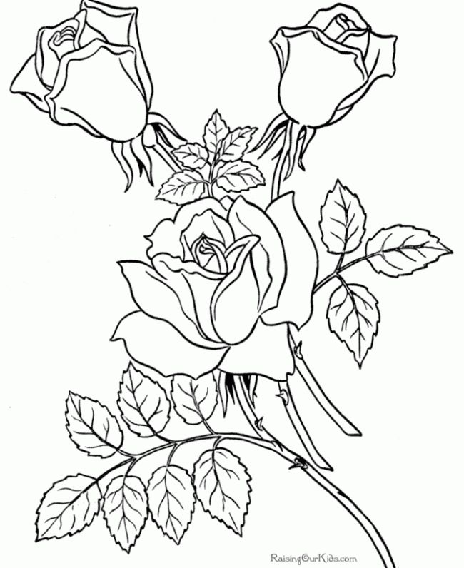 Coloring Pages Flowers Hard Hard Free Coloring Pages On Art
