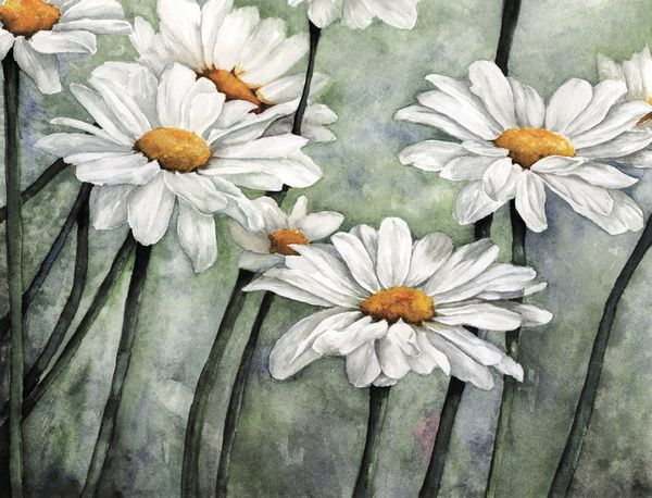 Karen's Daisies Art Print