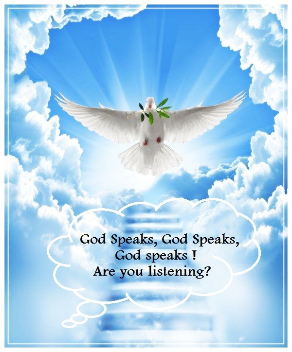 17 Best Images About Word Of God ! On Pinterest