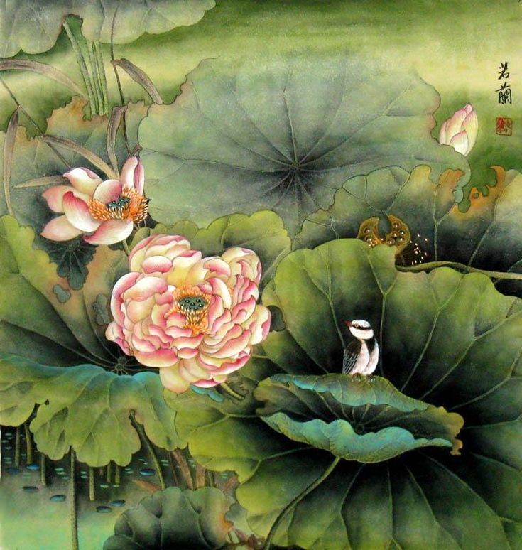 Chinese lotus painting buy handpainted oil