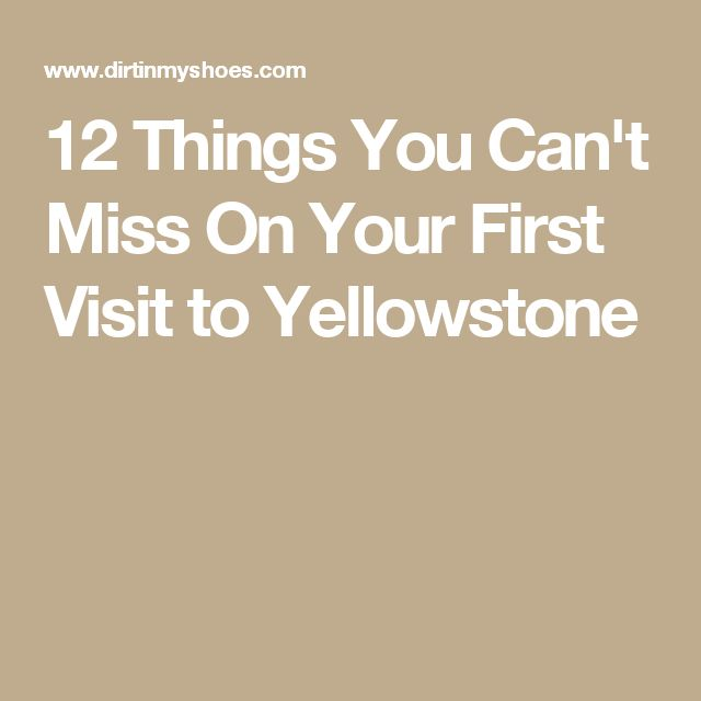 12 Things You Can't Miss On Your First Visit to Yellowstone