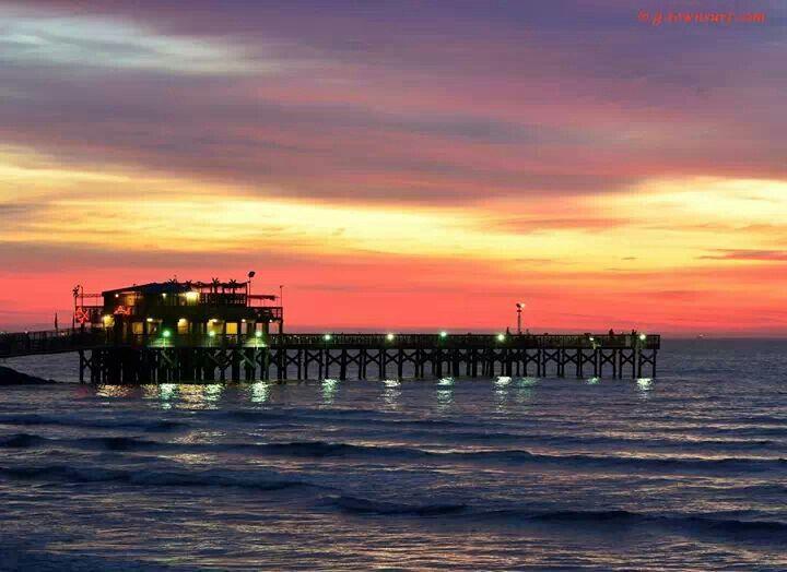 Fishing pier galveston pinterest galveston for Galveston pier fishing