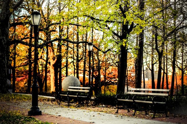 autumnal spaces