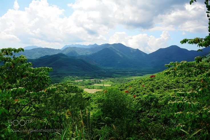 Bach Ma National Park by free3yourmind with parktreesflowersmountainsnaturevietnamnationallandscpaebach ma