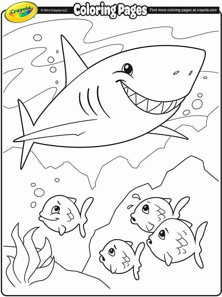 Baby Dory Coloring Page Desenhos para crianças colorir