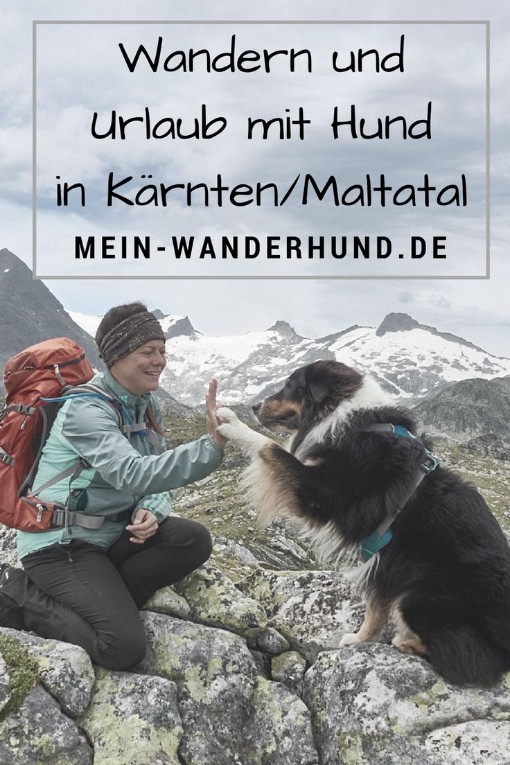 Tipps für Urlaub mit Hund im Maltatal - Kärnten - Hohe Tauern
