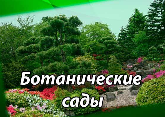 Ботанические сады Мира и Украины. Дендрологические ботанические сады. Характеристика территорий ботанических садов