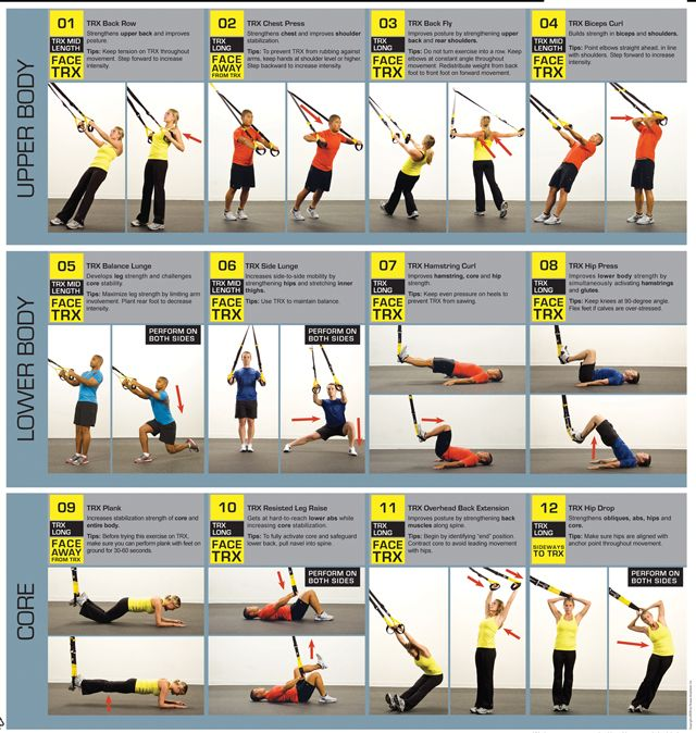 Great TRX/Suspension training workout basics for beginners  Upper body, lower body, and Core instructions with pictures