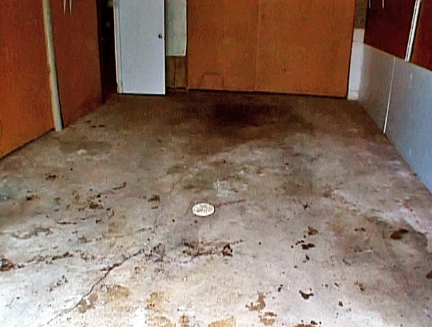 17 best images about concrete floors do it yourself on for How to clean concrete floors before staining