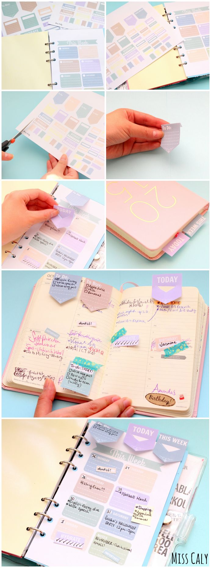 Free Planner Decorations and Weekly Diary Insert from Miss Caly