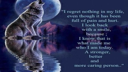 no regrets - demotivation, fun, best, art, words, love words, wolf wisdom, wallpaper, sayings, motivation, quote, text, wisdom, loving, humor