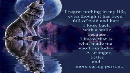 no regrets - demotivation, fun, best, art, words, love words, wolf wisdom, wallpaper, sayings, motivation, quote, text, wisdom, loving, humor