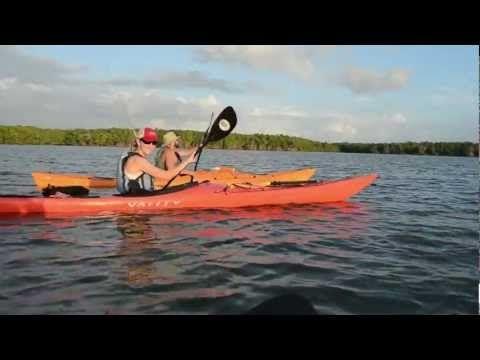 Four-day kayak trip to Noosa Everglades - YouTube