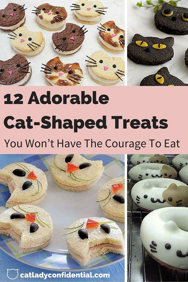 Cat shaped food