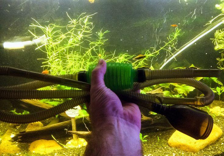 Подмена воды в аквариуме mdash; это важный процесс, поддерживающий как красоту аквариума так и для здоровье его обитателей. В этой статье представлены ответ
