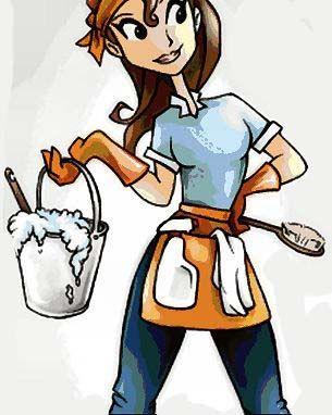 Amazing Grays: Clean and Green. Windex, Febreeze, Pledge & bathroom cleaner recipes.