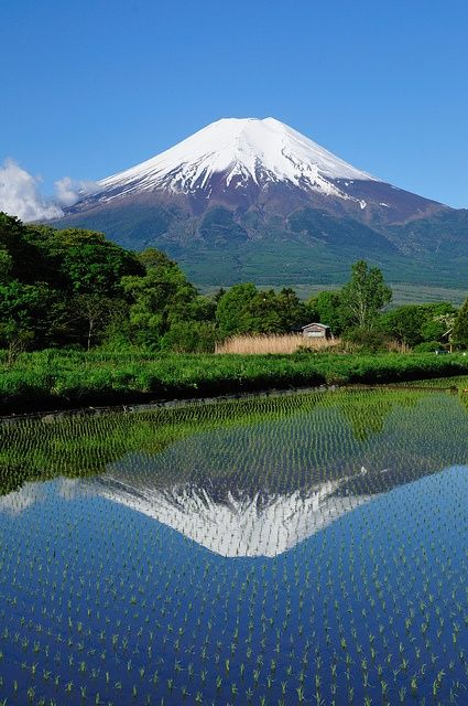 Mt. Fuji in Japan | Stunning Places #Places