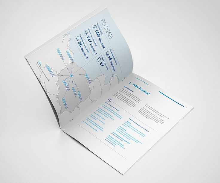 Business Services Sector In Poznan – Annual Report Design