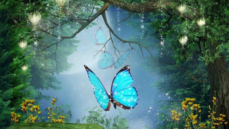"""Peaceful Music, Relaxing Music, Instrumental Music  """"Enchanted Forest"""" b..."""