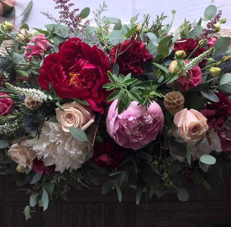 Burgundy Carnations in 2020 Carnation flower, Carnations