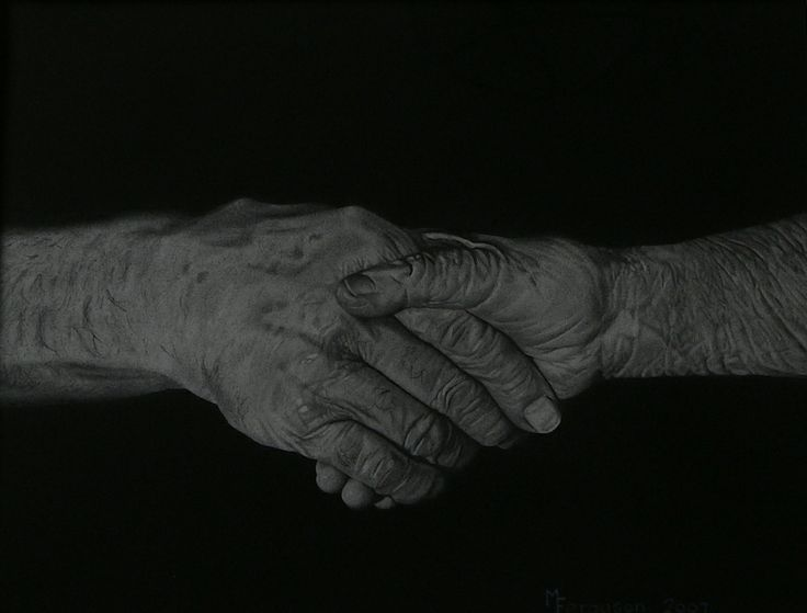 'Old Friends' - charcoal/graphite  2007 finalist - Spring Exhibition - Anderson Park Art Gallery   SOLD