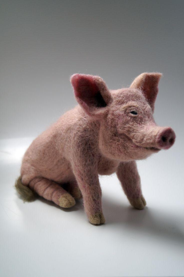 Pig Zeeman