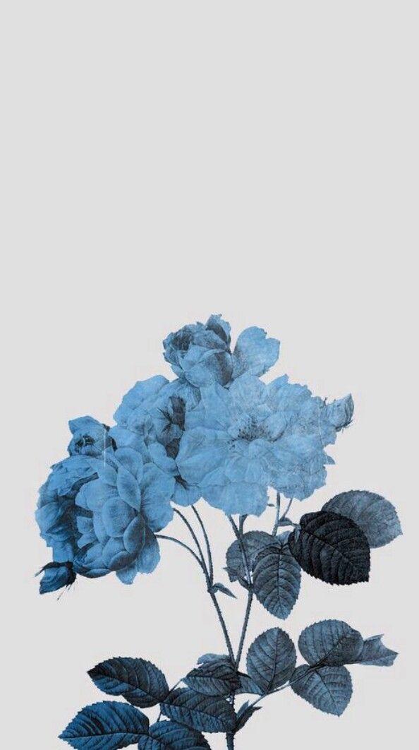 25 best ideas about blue wallpapers on pinterest 13. Black Bedroom Furniture Sets. Home Design Ideas