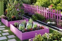 love this idea, but I would go with lime green, turquoise and royal blue!Gardens Ideas, Gardens Boxes, Raised Beds, Colors, Step Stones, Vegetables Gardens, Rai Gardens Beds, Gardens Design, Purple Gardens
