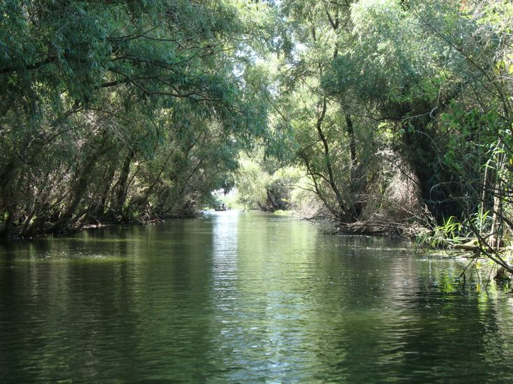 Unexplored place-Danube Delta - Eastern Europe Expatpriceline.com