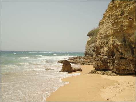 Playas en Caños de Meca - Cádiz