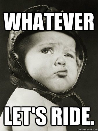 LET'S RIDE! #harleydavidson  @harleydavidson #eye4dogshdlongbranch.com