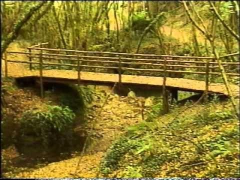 I Percorsi dello Spirito: La Via Francigena - parte nona - da Viterbo a ...