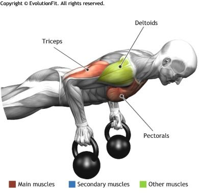 TRICEPS -  PUSH UP TIGHT KETTLEBELL