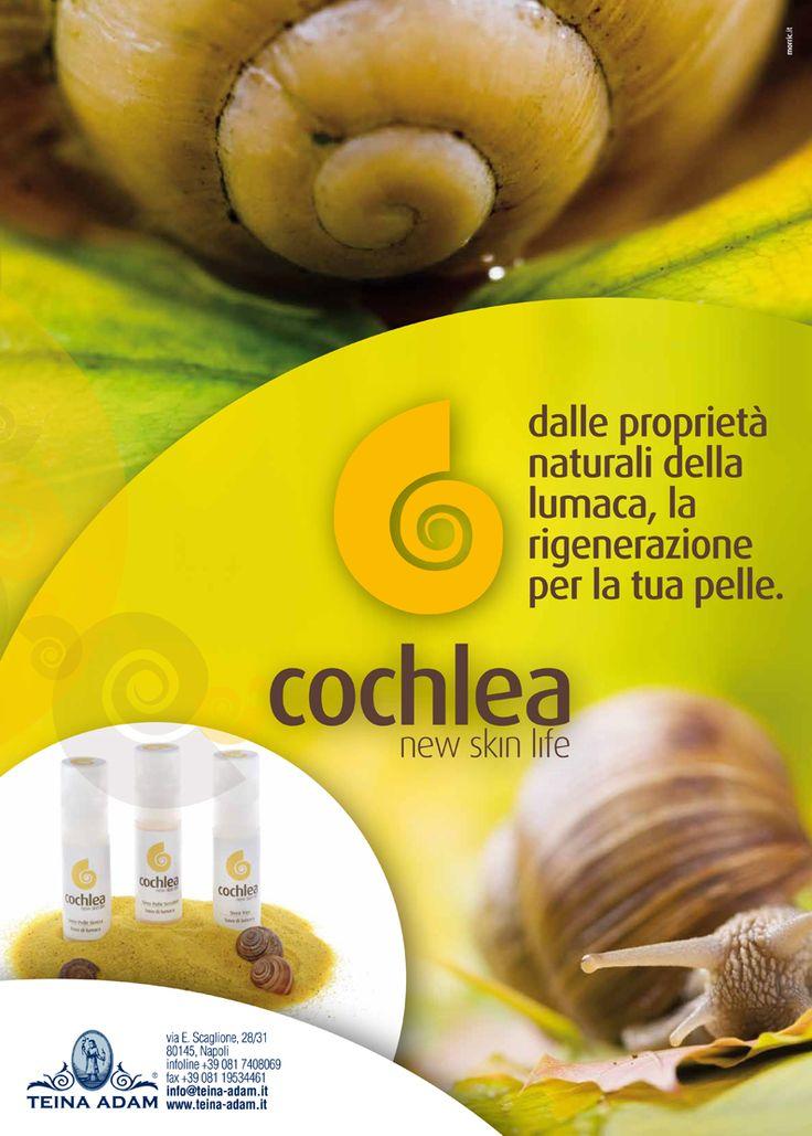 Cochlea | trattamento alla bava di lumaca www.teina-adam.it