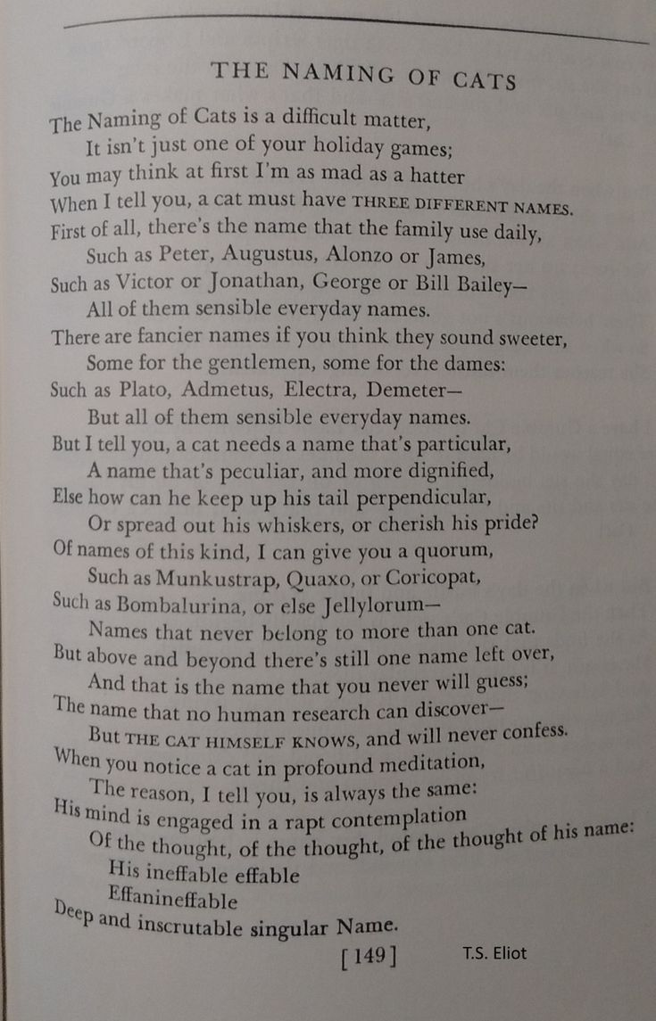 The naming of a cats-- T.S.Eliot