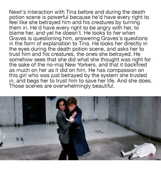 Newt & Tina | Fantastic Beasts