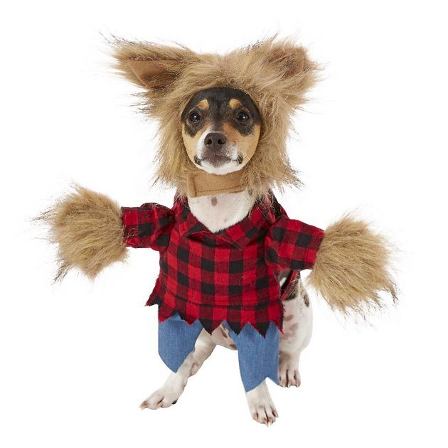 8493422a207f6b Buy Frisco Werewolf Dog & Cat Costume, Small at Chewy.com. FREE shipping  and the BEST customer service!