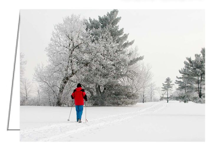 """Cross Country Skiing - Greeting Card. 5"""" x 7"""". Blank inside. Includes envelope. Buy online at Rob's Cards and Prints."""