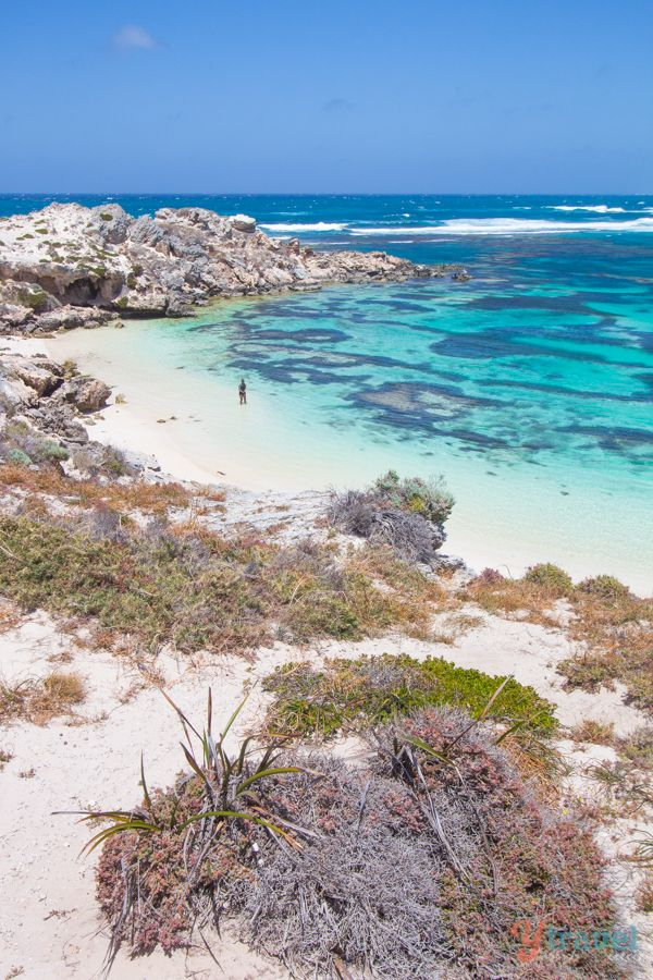 Little Salmon Bay, Rottnest Island, Western Australia   - Explore the World with Travel Nerd Nici, one Country at a Time. http://TravelNerdNici.com