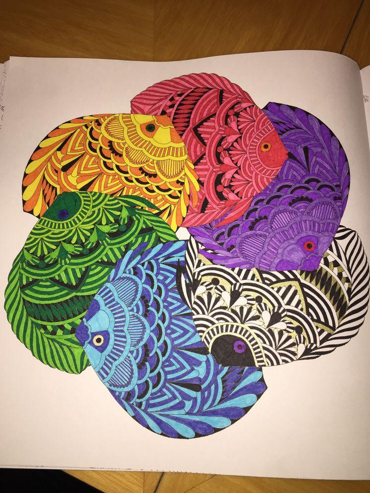 Millie Marotta Fish Tropical Wonderland Adult ColoringColoring BooksColouringDoodle ArtAnimal KingdomZentangleWonderlandPencilFish