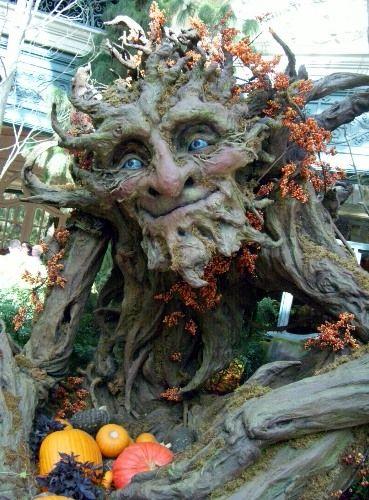 Outdoor Fall Decorating Ideas: Las Vegas-Style Fall Decorating Ideas