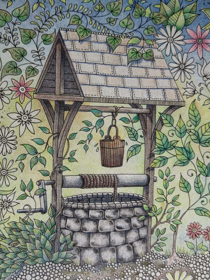 Passion for Pencils: My Secret Garden Colouring book, The Well part 2