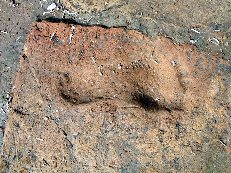 Chogha Zanbil footprint