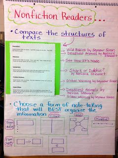 Two Reflective Teachers: Bulletin Boards and Charts