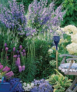 Plant a Garden by Color