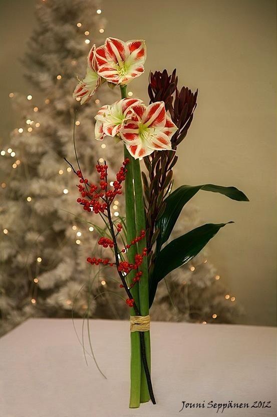 Kerstboeket, Hippeastrum, Ilex verticilata, Red Sunset en Aspidistra